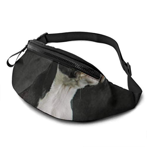 XINLU Fanny Packs for Women Cute Little Brown French Bulldog Waist Bags for Kids with Headphone Jack and Adjustable Straps Waist Bag for Boys for Travel Sports Hiking