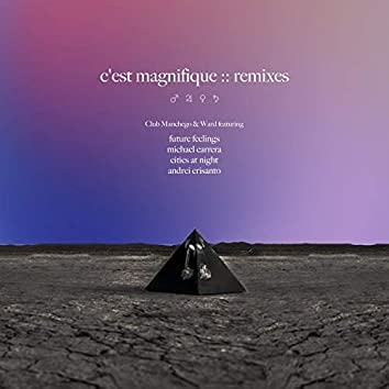 C'est Magnifique Remixes