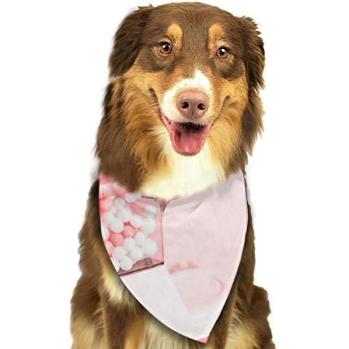 N/B Bbgsw Candy Dispenser Met snoepjes Aangepaste Hond Hoofddoek Heldere Gekleurde Sjaals Leuke Driehoek Bibs Accessoires Voor Huisdier Honden
