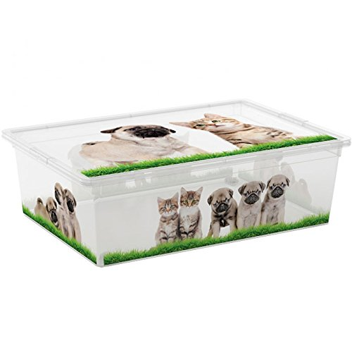 Kis 8416000 2056 01 Boîte de Rangement C Box Style Puppy&Kitten 27 litres, Plastique, Multicolore, 55 x 38,5 x 16,5 cm