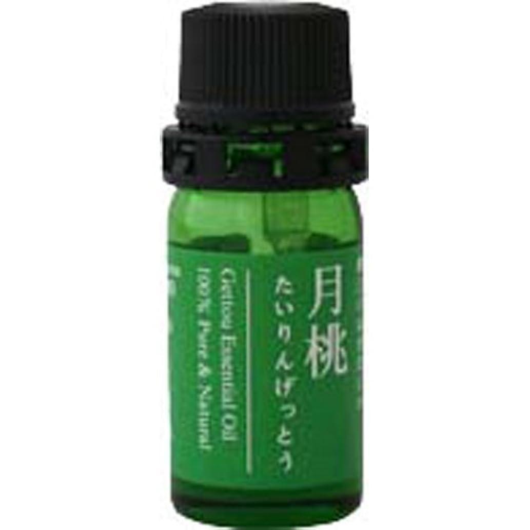 眠いです抽象ホース月桃 エッセンシャルオイル (タイリン) 2.5ml