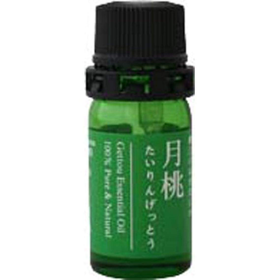 プロトタイプずらす名誉月桃 エッセンシャルオイル (タイリン) 2.5ml