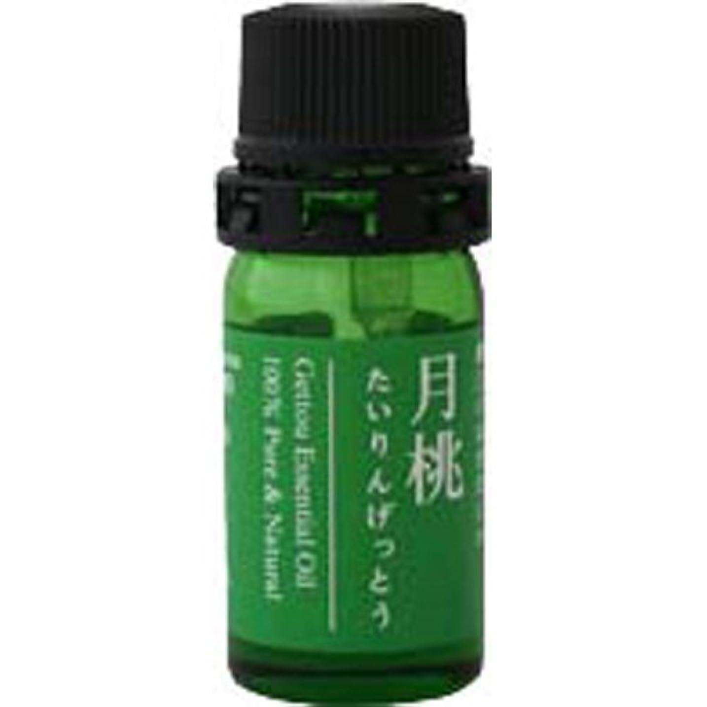最終作り説得月桃 エッセンシャルオイル (タイリン) 2.5ml
