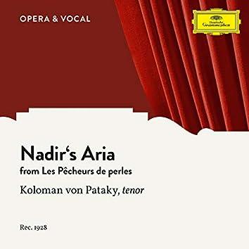 Bizet: Les pêcheurs de perles: Nadir's Aria