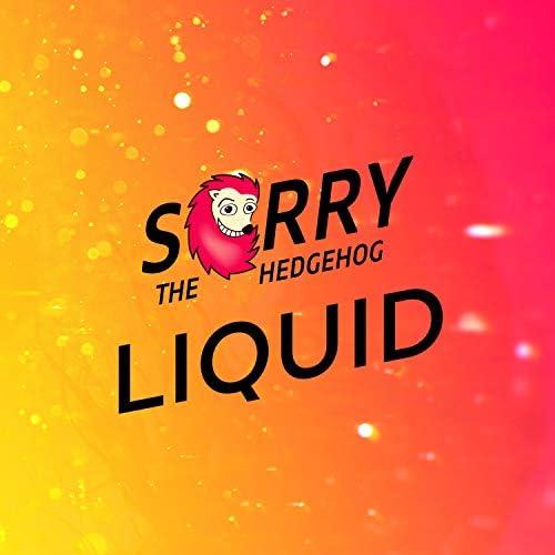 Sorry The Hedgehog