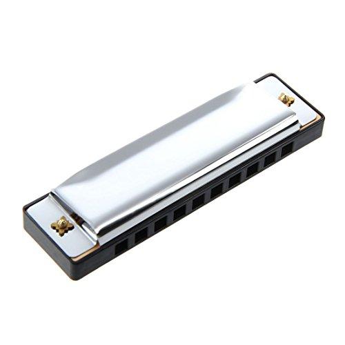 TOOGOO Blues harmonica diatonique 10 trous 20 voix nuances C Argent 100x28mm