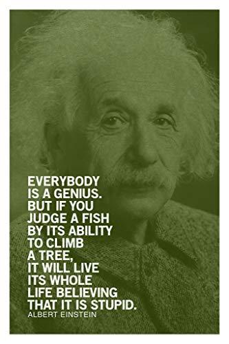 342016 Albert Einstein Everybody is A Genius Motivational Green Quote Decor Wall 16x12 Poster Print