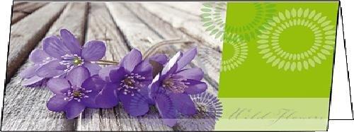 SIGEL DS177 Grußkarten Violetta, DIN lang, 25er Set - weitere Designs