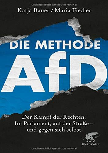 Die Methode AfD: Der Kampf der Rechten: Im Parlament, auf der Straße - und gegen sich selbst
