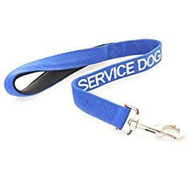SERVICE DOG Blue Red Green 60cm 120cm 180cm Padded Dog Lead PREVENTS Accidents By Warning Others of Your Dog in Advance