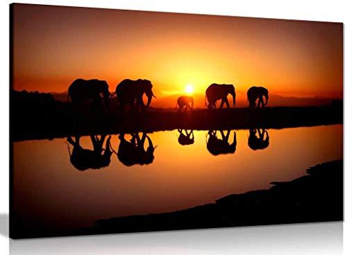 nobrand Druck auf Leinwand Kunst Afrikanische Sonnenuntergang Elefanten Natur Wildlife Leinwand Wandkunst Bild Moderne Wohnkultur Gemälde 70x120cm (27,6x47.2 Zoll) Kein Rahmen