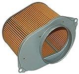 Hiflofiltro HFA3607 Premium OE Replacement Air Filter, Black