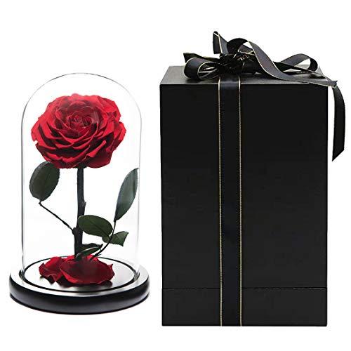 Real Rosa 9'' La bella y la bestia Rosa encantada en vidrio Rosa eterna Rosa...