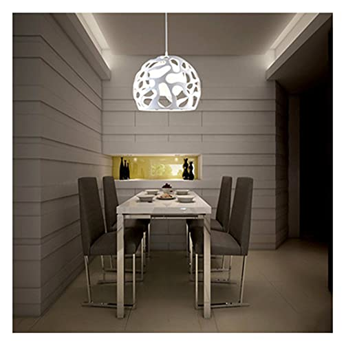 LWJDM Lampadario soffitto Moderno Resina lampadario Paralume in vetro Plafoniera per soggiorno isola cucina Altezza di sospensione regolabile Lampada E27* 1(D: 30cm),Blanco