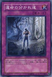 遊戯王カード 【運命の分かれ道】 POTD-JP052-N ≪パワー・オブ・ザ・デュエリスト≫