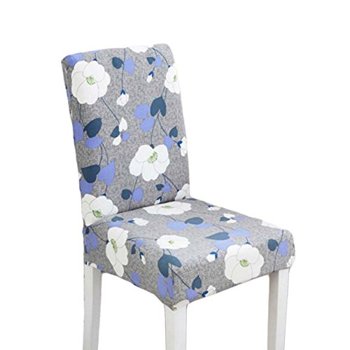 Blancho 2 Pieces Stretch Chair Slipcover Housse Moderne Housse Housse Housse Lavable