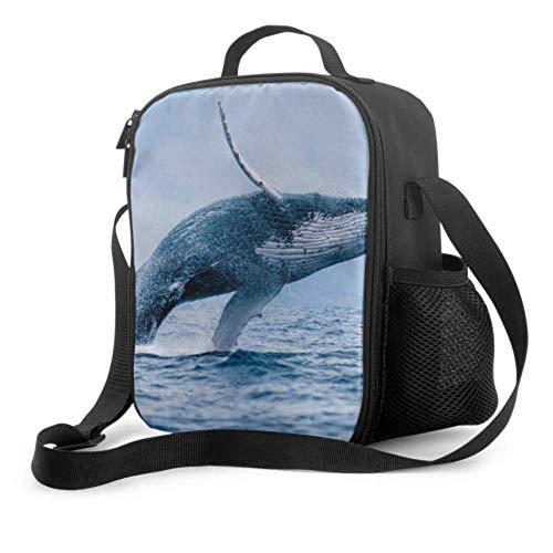 Lawenp Bolsa de almuerzo para niñas Buceo con ballenas jorobadas Cute Diver Girl Bolsas de almuerzo con asa para el hombro Bolsa refrigeradora reutilizable para hombres, mujeres, trabajo/escuela /