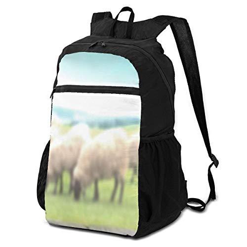 Stillleben Alte rostige Schere, die Schafe schert Industrielle Büchertasche Leichte Tasche zur Schule für Grundschüler 16-Zoll-Teenager Täglicher waschbarer Rucksack