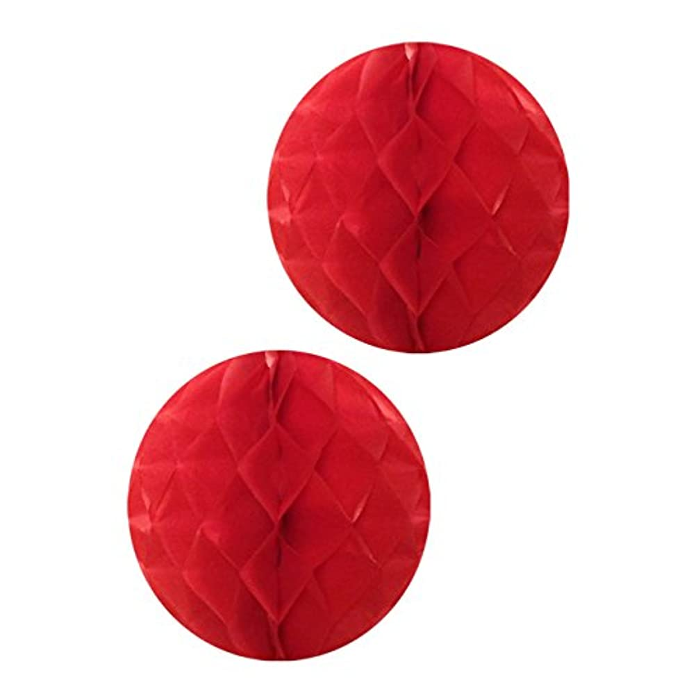 Wrapables Tissue Honeycomb Ball Party Decorations for Weddings, Birthday Parties, Baby Showers and Nursery Decor (Set of 2), 14