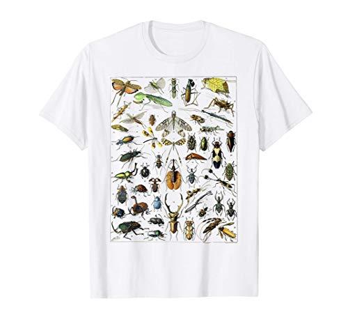 虫 昆虫 虫虫型 昆虫学プリント プレゼント 虫プリント Tシャツ