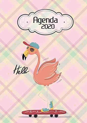 Agenda 2020 Hello: Tema Flamingos Agenda Mensual y Semanal +...