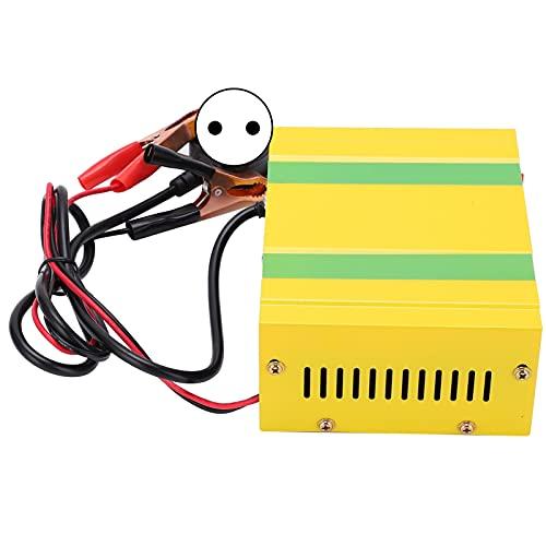 Eosnow Cargador de batería Inteligente Completo, Cargador de batería Que Ahorra energía, Acero Inoxidable antisísmico para automóvil, Motocicleta(European regulations, Pink)