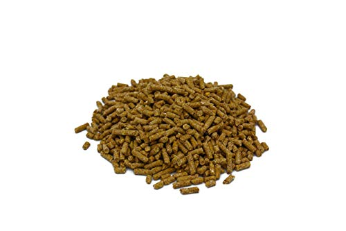 Family Farm and Feed | Complete Poultry Layer Food| Back Yard Chicken | Young and Adult | Pellet | 4 Pounds