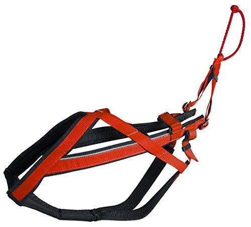 Neewa 8033087538410 – Racing Harness rot XL