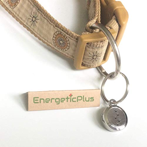 Bei Keimen, Nervosität, Ungeziefer, Viren, Pilzen, Aroma-Therapie von EnergeticPlus