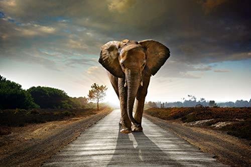 1000 stukjes puzzel Olifant lopen op snelweg, vrije tijd creatieve puzzel 75x50cm