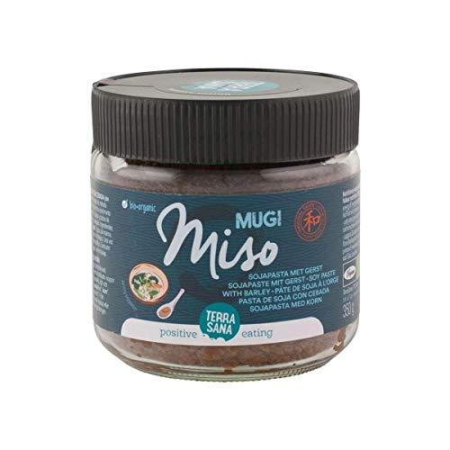 TERRASANA Mugi Miso Sin Pasteurizar Pasta De Soja Con Ceba, 450 g
