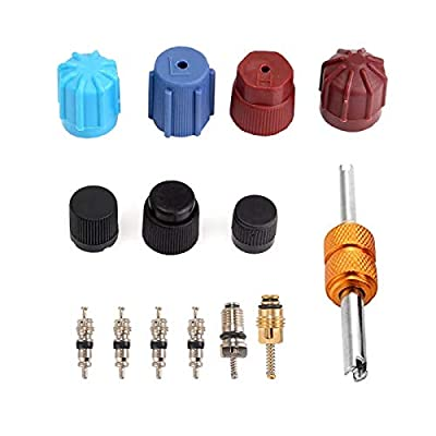 Air Conditioning Valve Core Kit, Car AC Cap & Valve Air Conditioning System Seal Kit R12 R134a Replacement Parts with Remover-Installer Tool