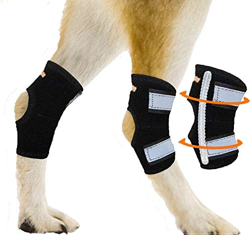 NeoAlly Super Supportive Dog Braces for Rear Leg...