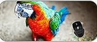 XXLゲームラージマウスパッド動物コンゴウインコ色の羽