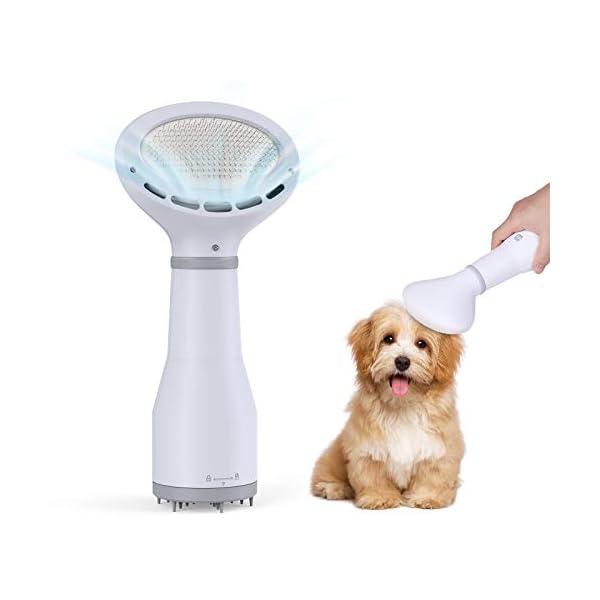 DADYPET Dog Hair Dryer Brush Dog Blow Dryer with Slicker Brush Quiet, 2 Heat Settings...