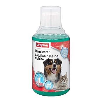 BEAPHAR - Solution haleine fraîche – Favorise la bonne santé bucco-dentaire du chien et du chat sans brossage ni rinçage – Élimine la plaque dentaire – Empêche la formation de tartre - 250 ml