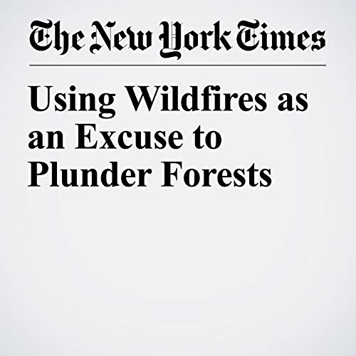 Using Wildfires as an Excuse to Plunder Forests copertina