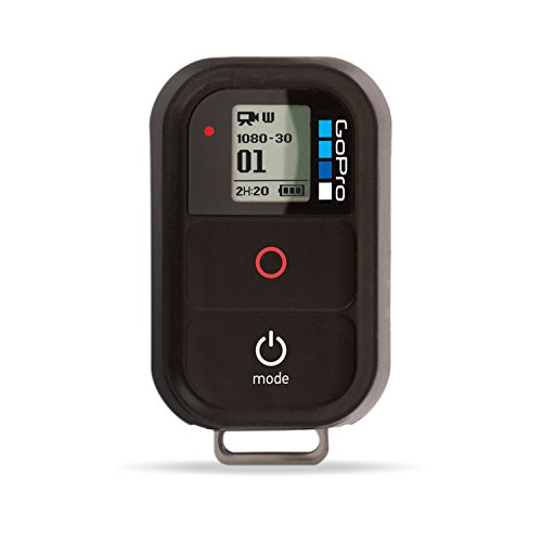 GoPro Wi-Fi Remote (GoPro Official Accessory) (Renewed)
