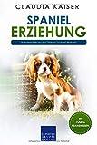Spaniel Erziehung: Hundeerziehung für Deinen Spaniel Welpen