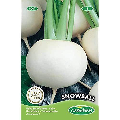 Germisem Snowball Semillas de Remolacha 20 g, EC9007