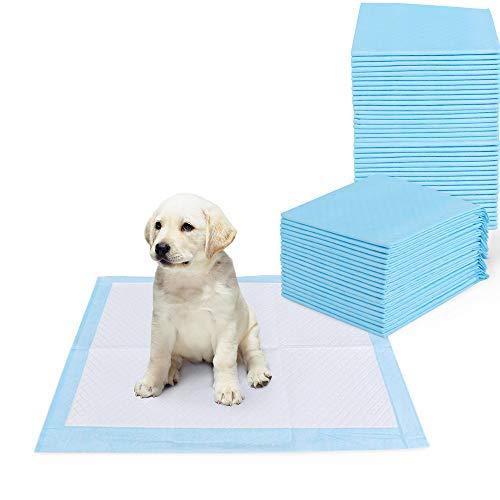 PetInn 50 Unidades Almohadillas de Entrenamiento Súper Absorbentes, Almohadillas de Entrenamiento Multicapa para Orinar para Perros y Cachorros.