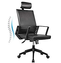 Extended Height Office Chairs