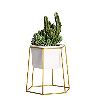 Gold Geometric Planter Holder Metal Iron Rack with White Small Ceramic Flower Pot for Succulents Herbs Cactus Plants Modern Office Indoor Balcony Desktop Garden Decorative Set Centerpiece
