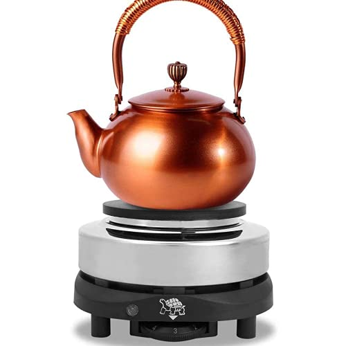 Fornello elettrico, fornello elettrico portatile da appoggio fornello elettrico in acciaio a temperatura regolabile per tè caffè cucina fornello a piastra riscaldante singolo (spina europea)