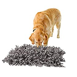 Dog Sniffing For Food In A Snuffle Mat.