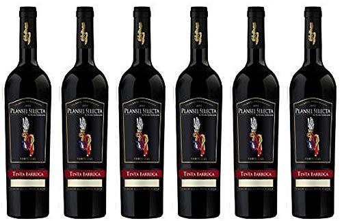 Dorina Lindemann: 6 Flaschen Plansel Selecta Tinta Barroca 2016. Ein granatfarbener Wein mit intensiven Aromen von Herzkirsche