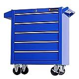 TANKSTORM Tool Chest Heavy Duty Cart Steel Rolling Tool Box 5 Drawer Cart (TZ35-BK)