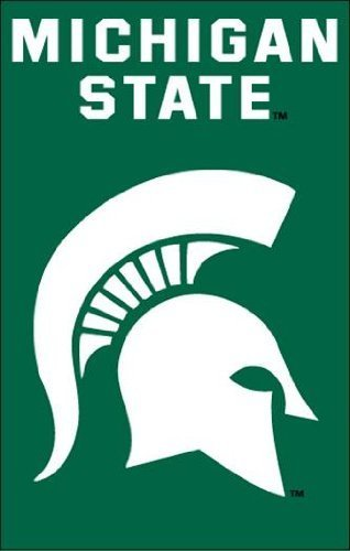 Michigan State Spartans Applique Banner Flag by Party Animal