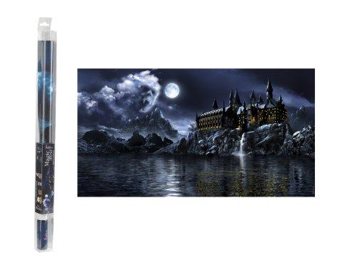 Hydor B00110 Aquariendekoration Magic World Hintergrund und Gel, 80 x 40 cm