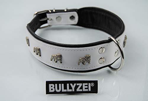 BULLYZEI Halsband Leder Englische Bulldogge 65cm x 5cm WEIß